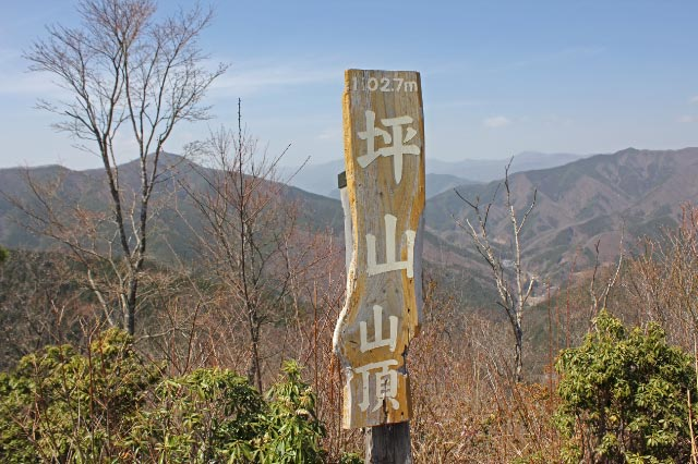 坪山山頂-1.jpg