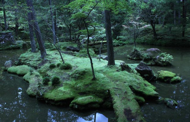 苔寺1-1.jpg