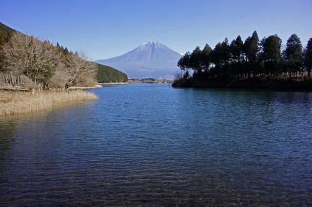 田貫湖ソニー-1.jpg