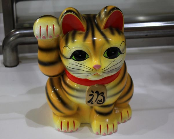 猫2-1.jpg