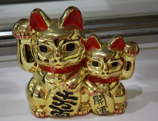 猫3-1.jpg