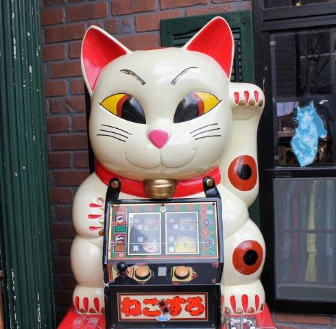 猫1-1.jpg