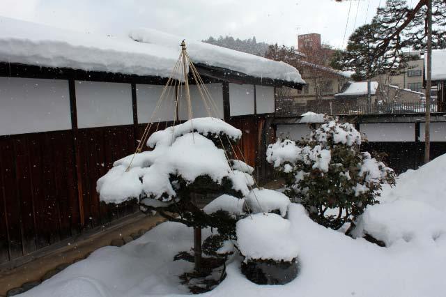 陣屋の庭-1.jpg