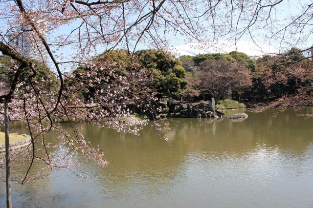 小石川後楽園-1.jpg
