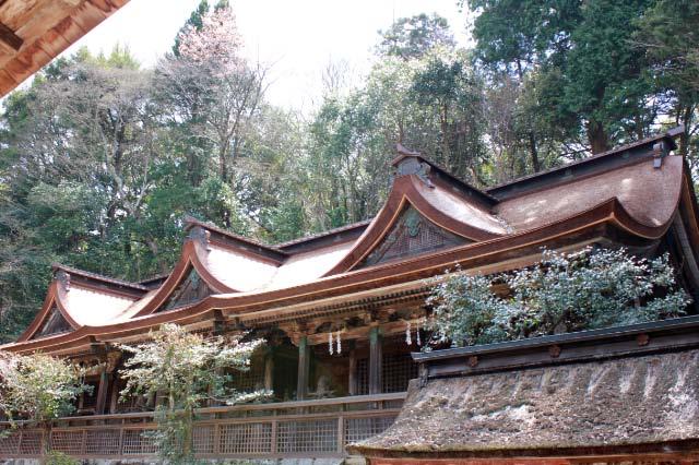 神社2-1.jpg
