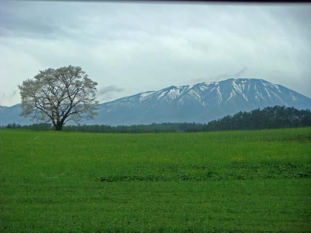 岩手山-1.jpg