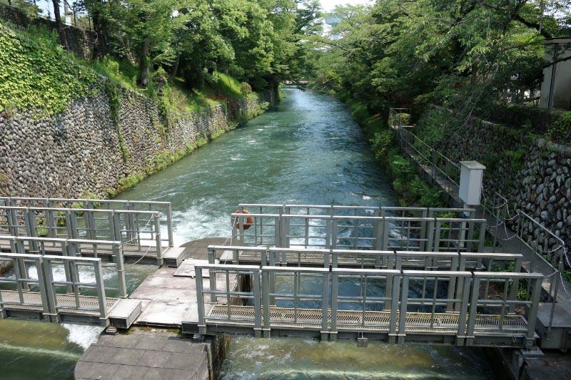 玉川上水-1-1.jpg
