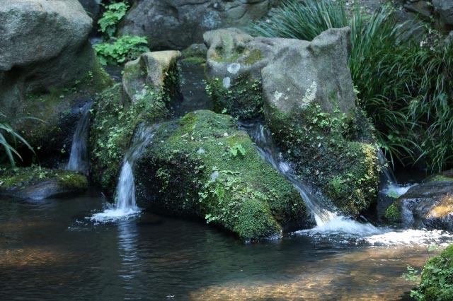 水分石-1.jpg