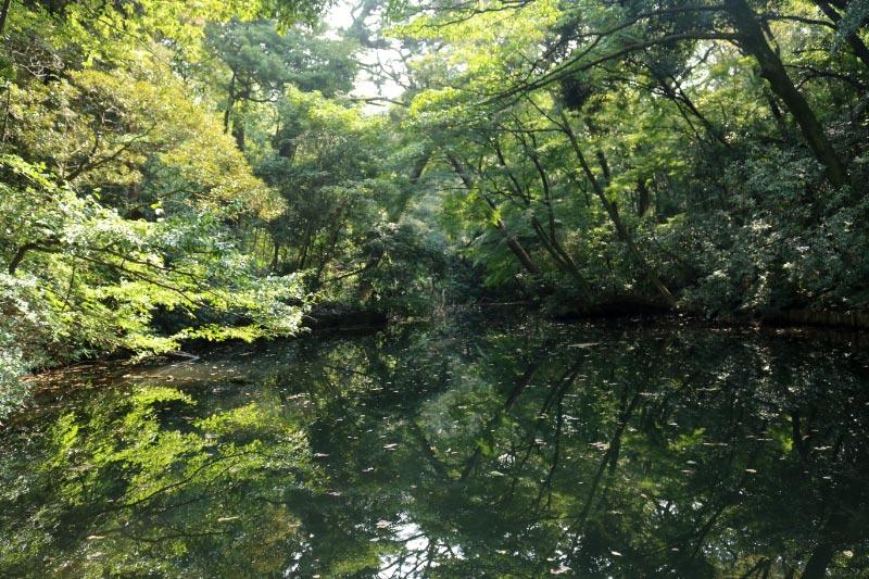 池-1.jpg