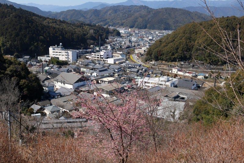 佐川町-1.jpg