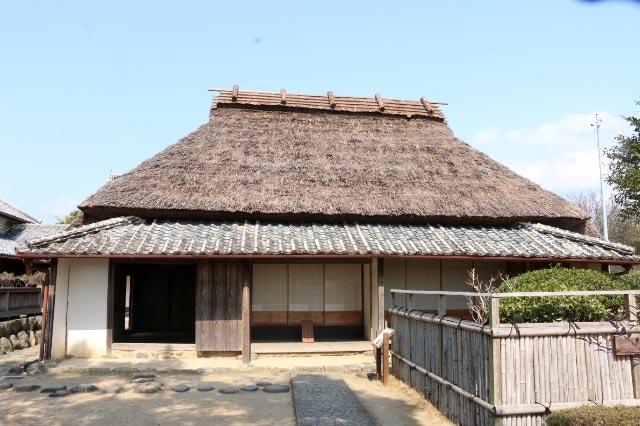 岩崎-1.jpg