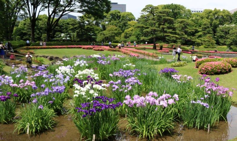二の丸庭園-1.jpg