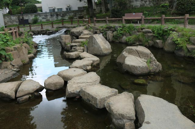 鶴が久保公園-1.jpg