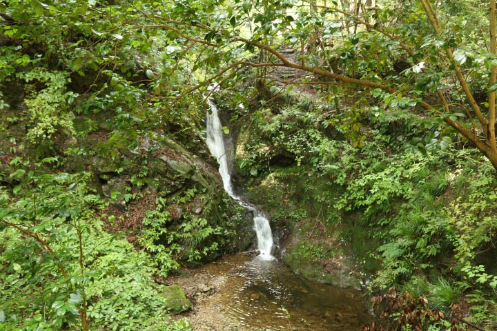 白岩の滝-1-2.jpg