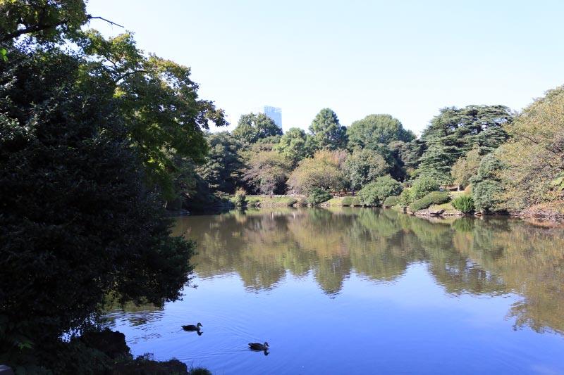新宿御苑-1-4.jpg