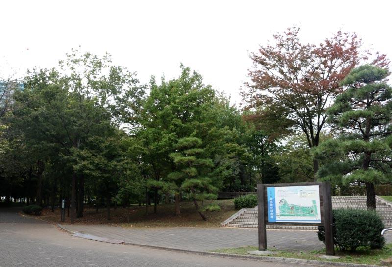 木場緑化植物園-1.jpg