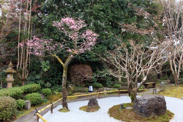 オーベルジェ楓の木-1.jpg