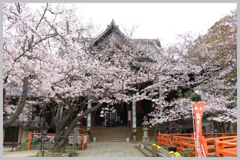 紀三井寺-1.jpg