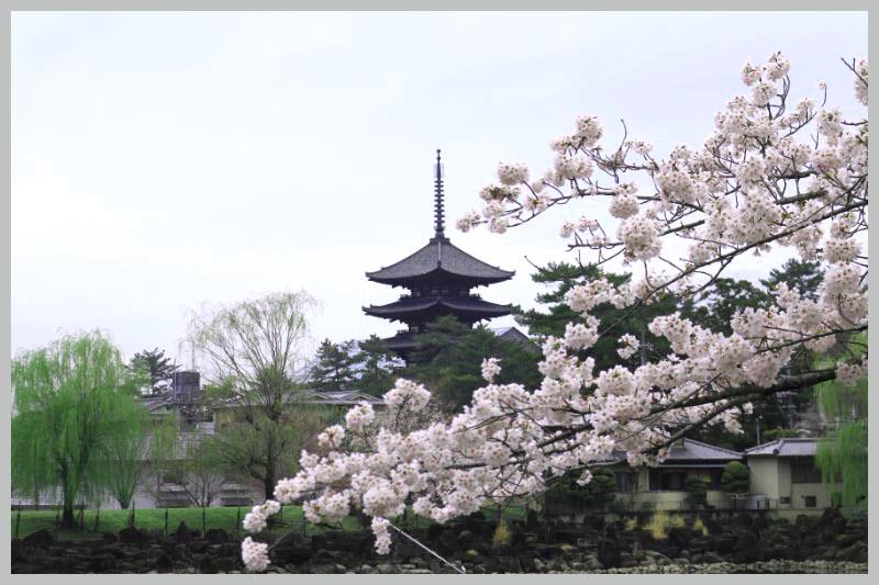 興福寺-1.jpg