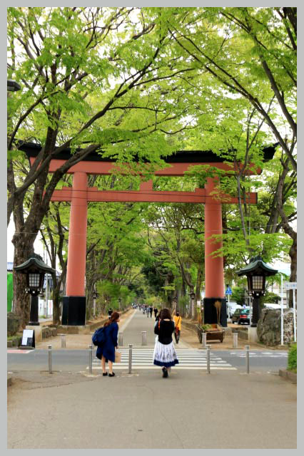 氷川神社-1.jpg