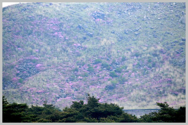 硫黄山-1-1.jpg