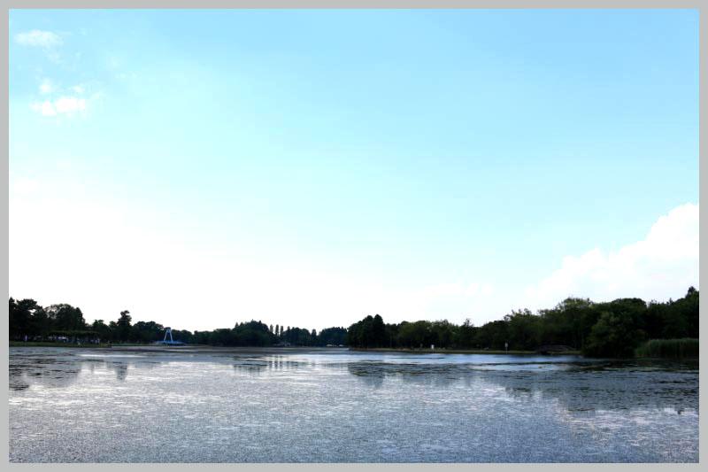水元公園-1-2.jpg