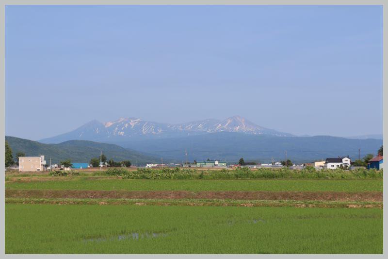 市内から見た旭岳-1.jpg