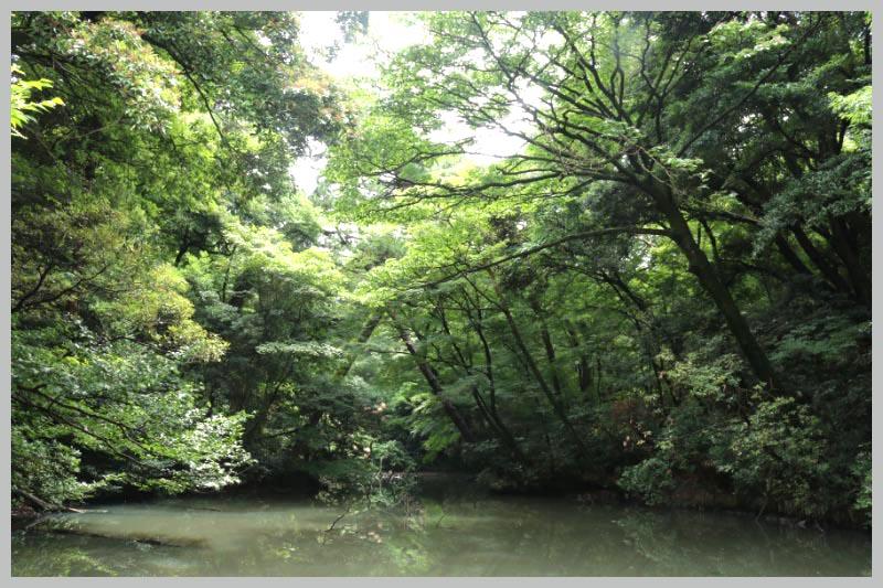 ひょうたん池-1.jpg