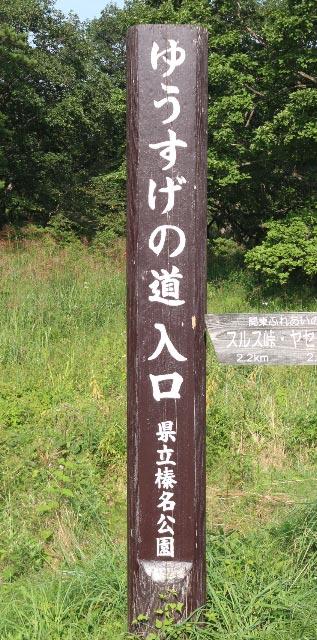 ゆうすげの道-1.jpg