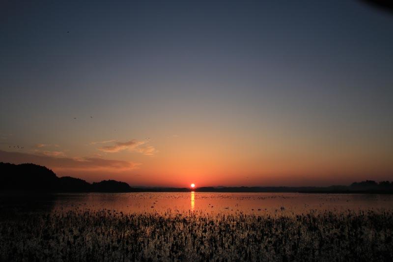 日の出-1-1.jpg