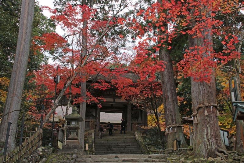西明寺-1.jpg