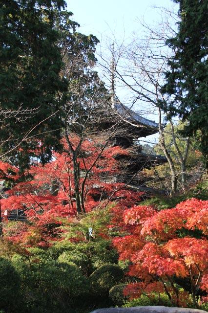 三井寺-1.jpg