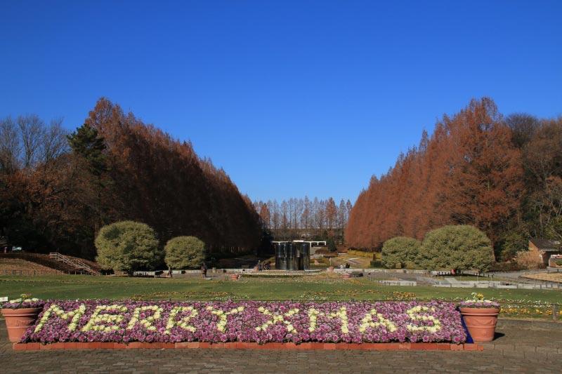 相模原公園-1.jpg