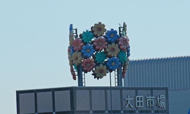 大田花市場-1.jpg