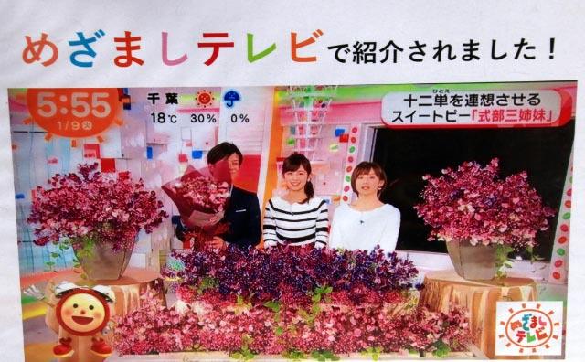 めざましテレビ-1.jpg