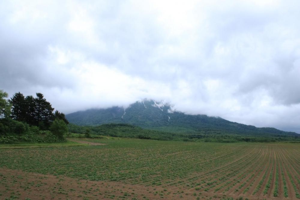 羊蹄山-1.jpg