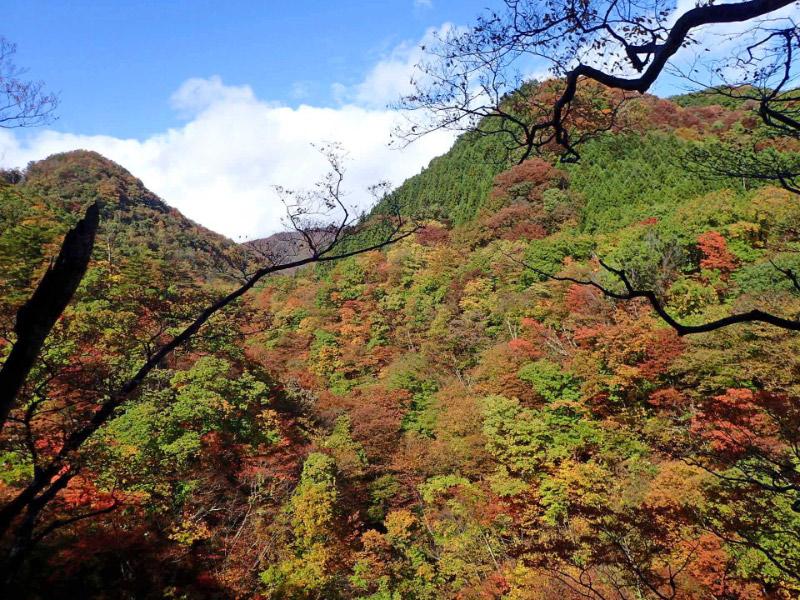 秋保大滝の紅葉-1.jpg