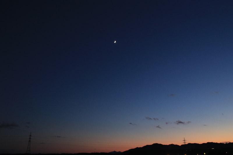 上弦の月-1.jpg