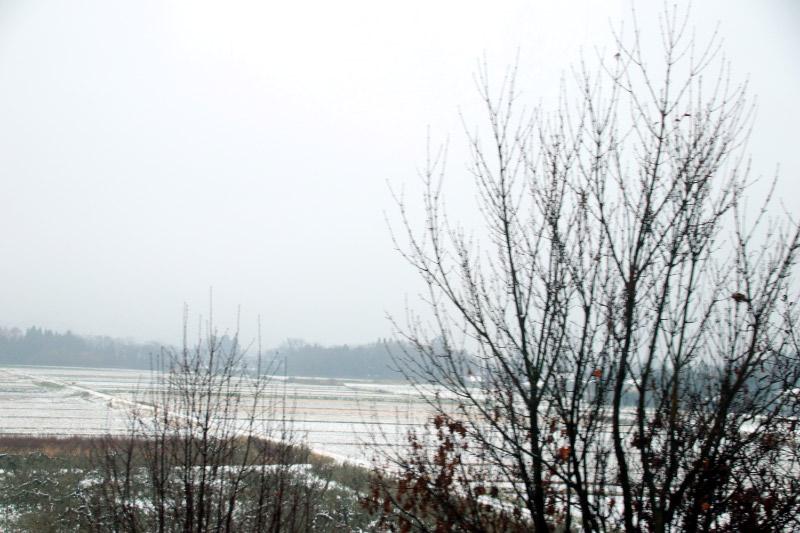 初雪-1-1.jpg