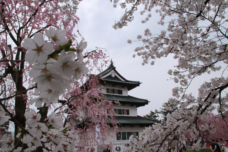 弘前城-1-1.jpg