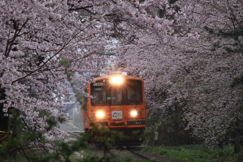 あしのこうえん駅-1.jpg