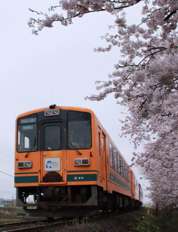 十川-1.jpg