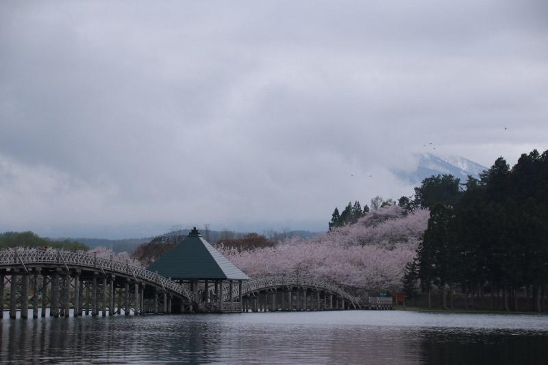 鶴の舞橋-1-1.jpg