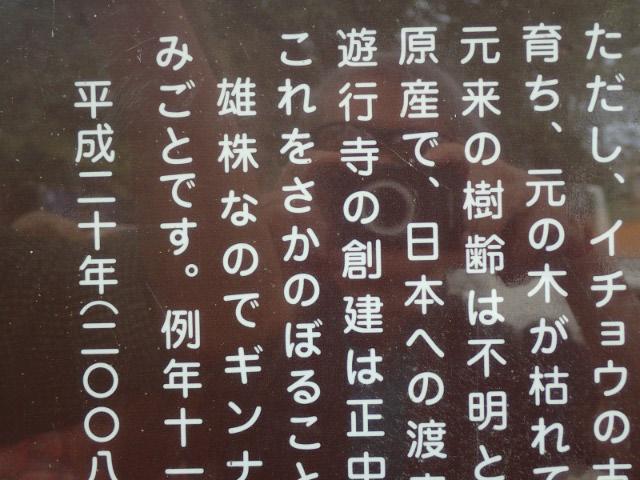 オカブ-1.jpg
