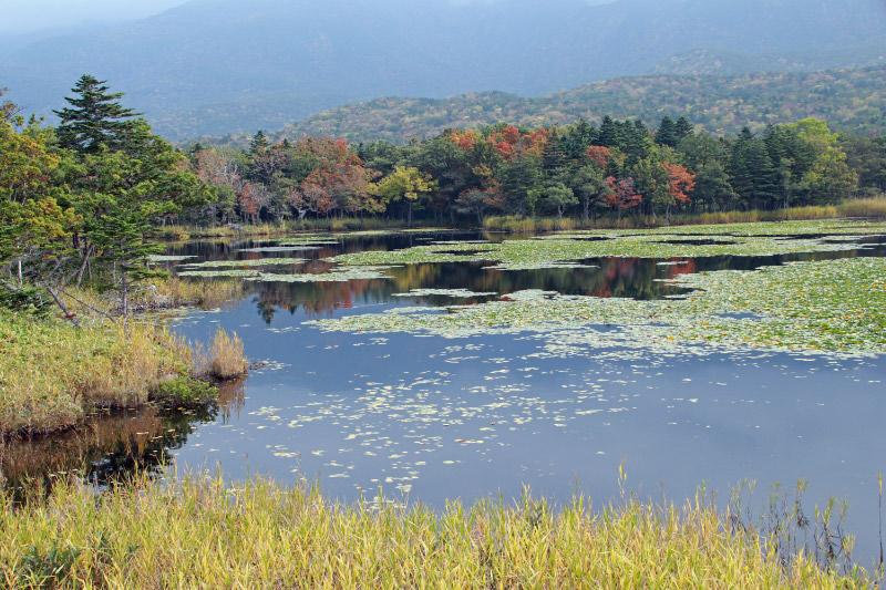 知床一湖-1-1.jpg
