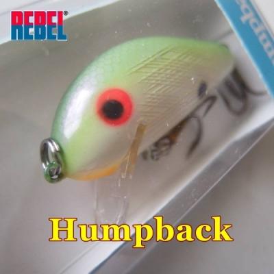 バック ハンプ