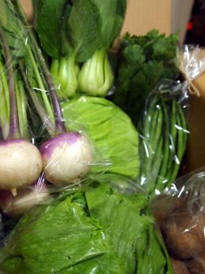サンキュウ農園さんのぎっしり野菜