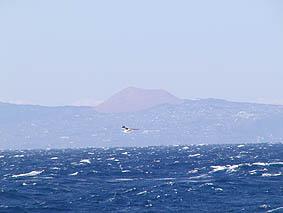 中央の赤い山が大室山。向こう側に南アルプスが見えます。