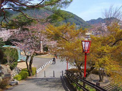 美濃市小倉公園   A photograph ...