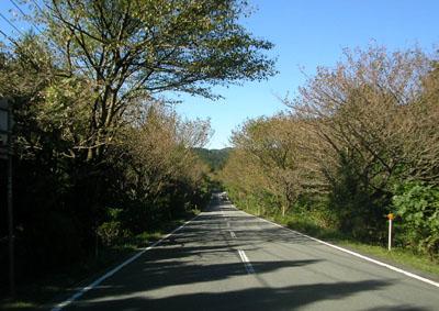 遠笠道路1